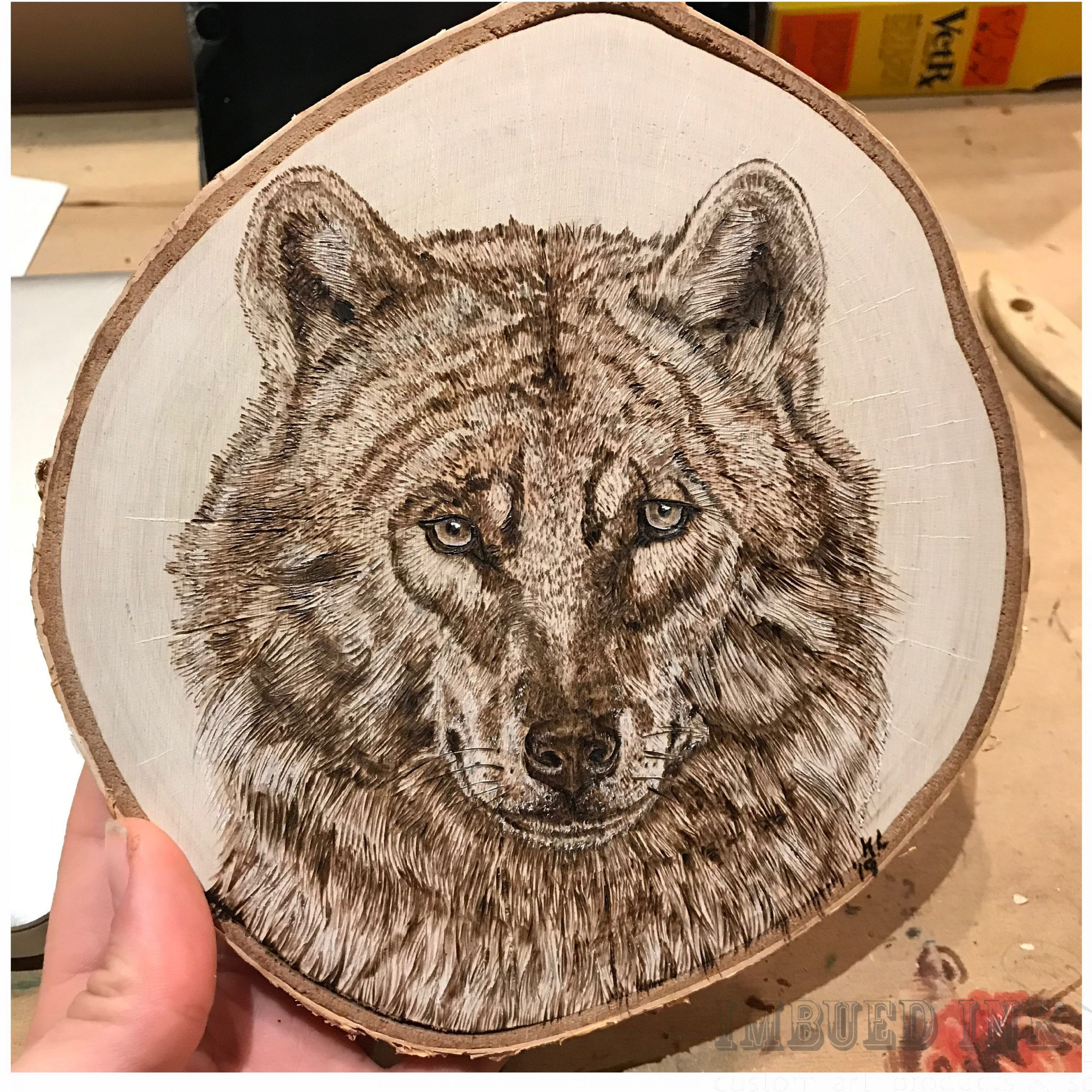 Wolf Face By Kelsi Lytle